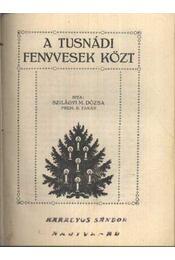 A Tusnádi fenyvesek közt - Régikönyvek