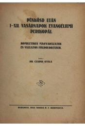 Pünkösd után I-XII. vasárnapok evangéliumi perikopál. - Régikönyvek