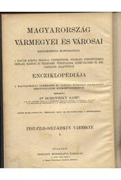 Pest.Pilis-solt-Kiskun Vármegye I.kötete - Régikönyvek