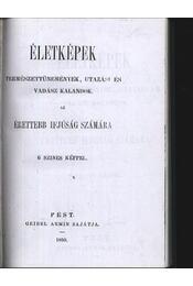 Életképek - Régikönyvek