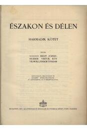 A Nagy Háború írásban és képben I. rész - Északon és délen III. kötet - Régikönyvek
