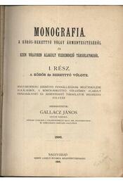 Monografia a Kőrös-Berettyó völgy ármentesítéséről és ezen völgyben alakult vízrendező társulatokról I-II. kötet - Régikönyvek