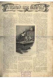 A Vasárnapi Újság Regénytára 1899. évfolyam - Régikönyvek