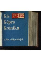 Kis Képes Krónika - Régikönyvek