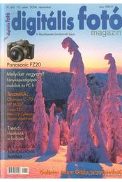 Digitális fotó 2004. december 10. szám - Dékán István - Régikönyvek