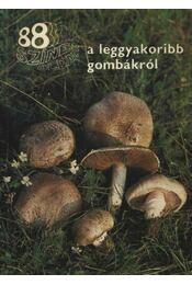 88 színes oldal a leggyakoribb gombákról - Dr. Rimóczi Imre - Régikönyvek
