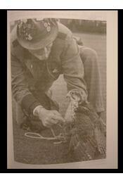 Életem a vadászmadarakkal - Régikönyvek