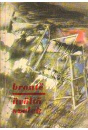 Üvöltő szelek - Emily Bronte - Régikönyvek