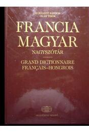 Francia-Magyar nagyszótár - Régikönyvek