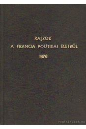 Rajzok a francia politikai életből 1878. - Grenville, Murray E. C. - Régikönyvek