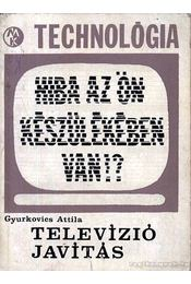 Televíziójavítás - Gyurkovics Attila - Régikönyvek