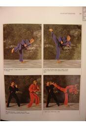 Harcművészetek - Régikönyvek