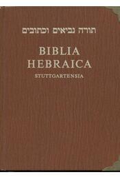 Biblia hebraica - Régikönyvek