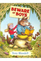Beware of Boys - Régikönyvek