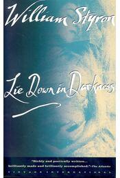 Lie Down in Darkness - William Styron - Régikönyvek