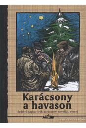 Karácsony a havason - Hunyadi Csaba Zsolt - Régikönyvek