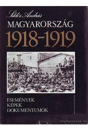 Magyarország 1918-1919 - Régikönyvek