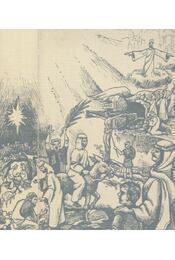 Biblia magyarázatokkal és képekkel - Ingwersen, G. - Régikönyvek