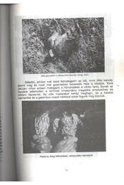 Solymászévkönyv 1994-1995 - Régikönyvek