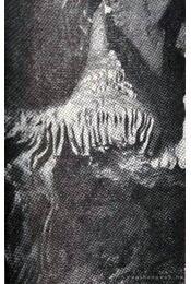 Abaligeti barlang - Régikönyvek