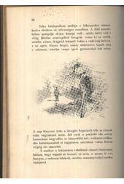 Erdőn, mezőn - Rövidített kiadás az ifjuság számára - Régikönyvek