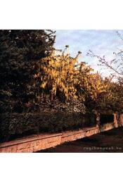 88 színes oldal a virágos díszcserjékről - Régikönyvek