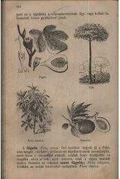 Növénytan - Régikönyvek