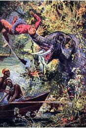 Az elefántok földjén - Régikönyvek