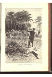 Az apróvad vadászata - Régikönyvek