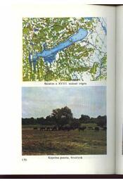 A balatoni üdülőkörzet természeti értékei - Régikönyvek
