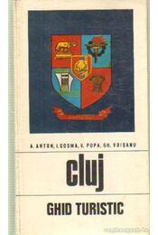 Cluj - Régikönyvek