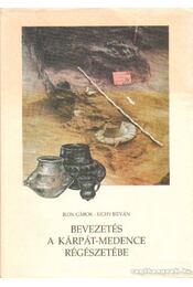 Bevezetés a Kárpát-medence régészetébe - Régikönyvek