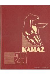 Kamaz 25 - Régikönyvek