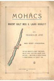 Mohács - Miként halt meg II. Lajos király? - Régikönyvek