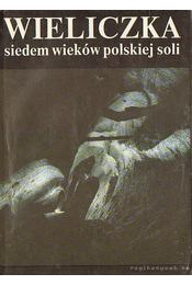 Wieliczka - Hanika, Tekst Mariana, Klimowskiego, Zdjecia Stanislawa - Régikönyvek