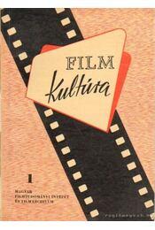 Filmkultúra 1. - Régikönyvek