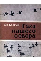 Északi vidékünk récéje (Гага нашего севера) - Régikönyvek
