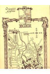 Eger belvárosa - Régikönyvek