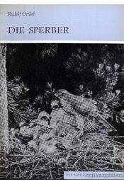 Die Sperber 1981. - Régikönyvek