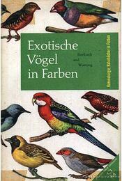 Exotische Vögel in Farben - Régikönyvek