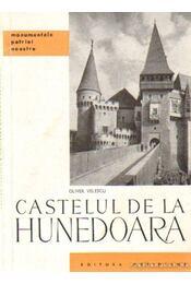 Castelul de la Hunedoara - Régikönyvek