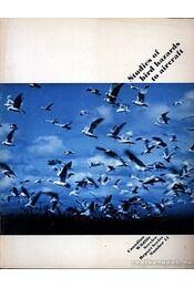 Studies of bird hazards to aircraft (Repülőgépek madárveszélyéről végzett tanulmányok) - Régikönyvek