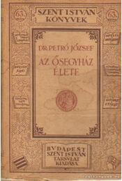 Az Ősegyház élete - Petró József dr. - Régikönyvek