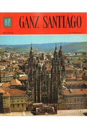 Ganz Santiago - Régikönyvek