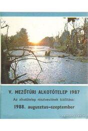 V. Mezőtúri Alkotótelep 1987. - Régikönyvek