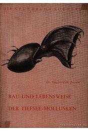 Bau und Lebensweise der Tiefsee-Mollusken (A vámpír tintahal testfelépítése és életmódja) - Régikönyvek
