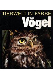 Tierwelt in Farbe- Vögel (Színes állatvilág- Madarak) - Régikönyvek