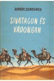 Sivatagon és vadonban - Henryk Sienkiewicz - Régikönyvek