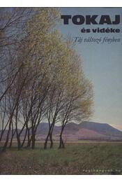 Tokaj és vidéke - Régikönyvek