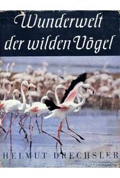 Wunderwelt der wildern Vögel - Régikönyvek